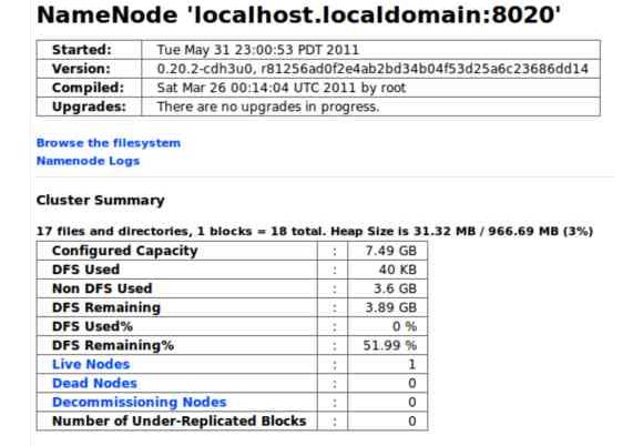 Name Node Status