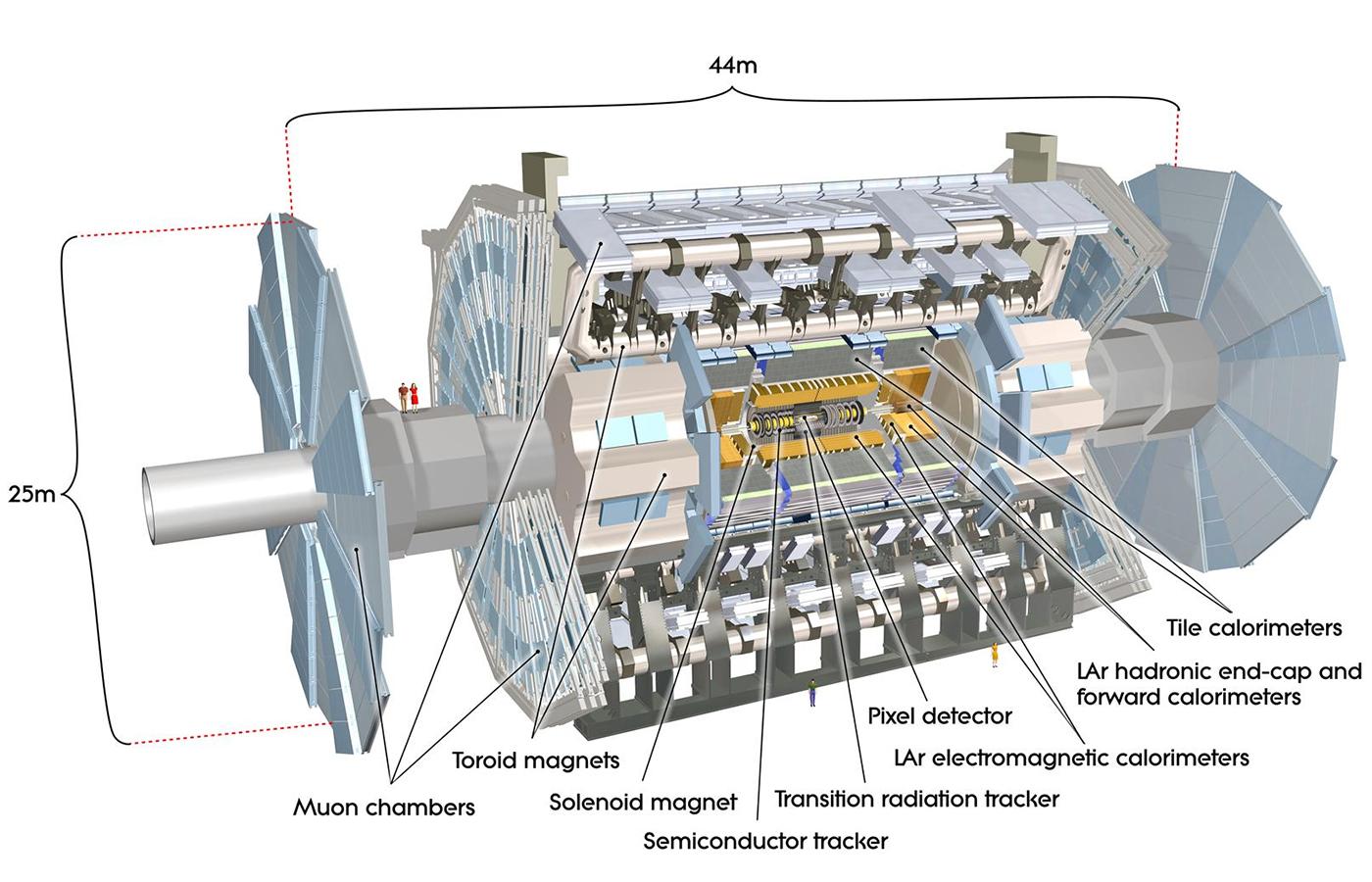 ATLAS Detector at the LHC