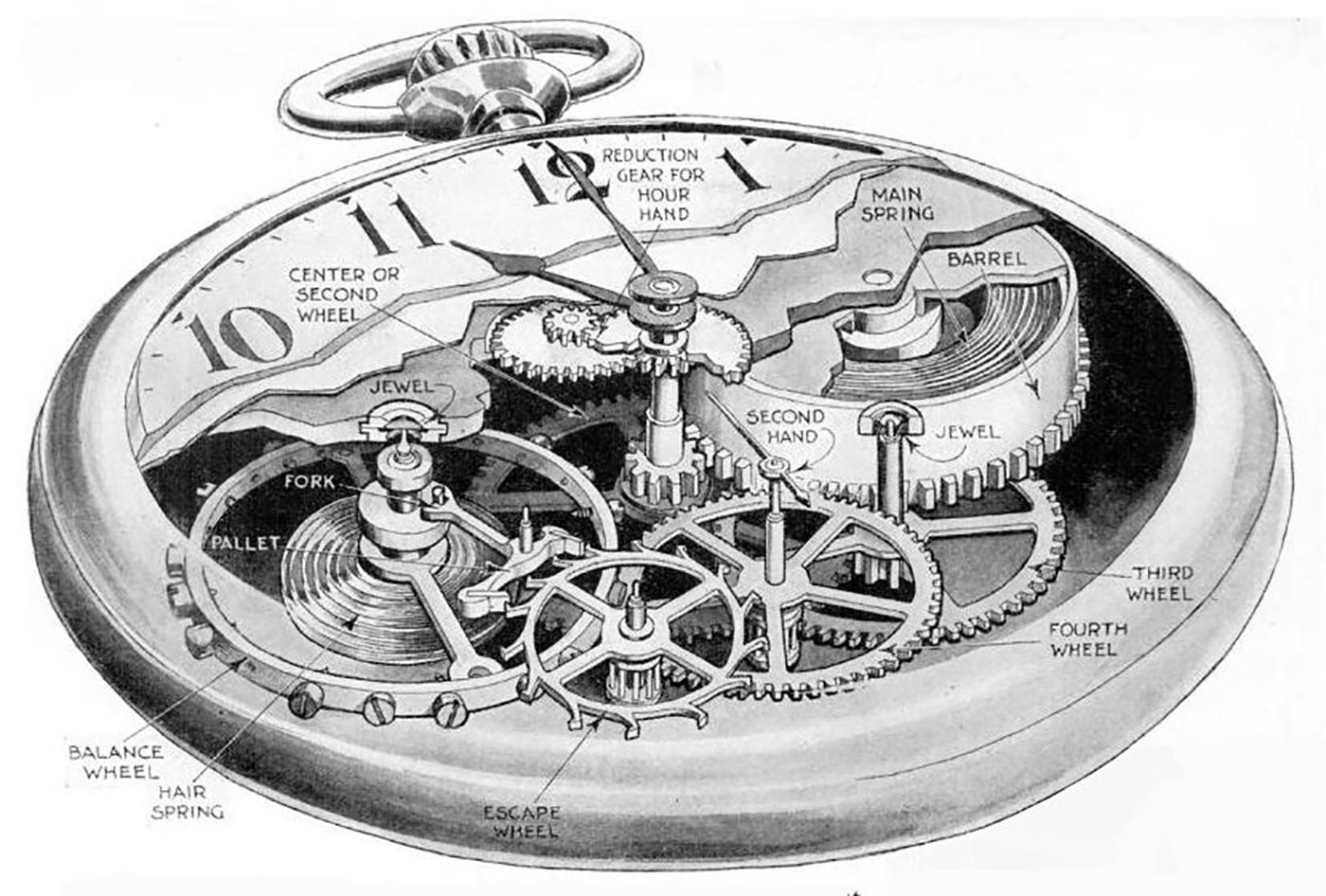 Cutaway drawing of a pocketwatch movement.