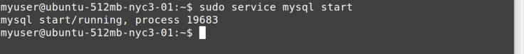 service start command