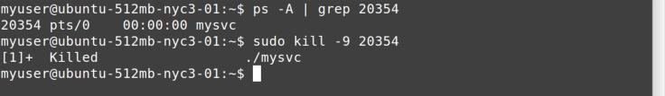 kill -9 command
