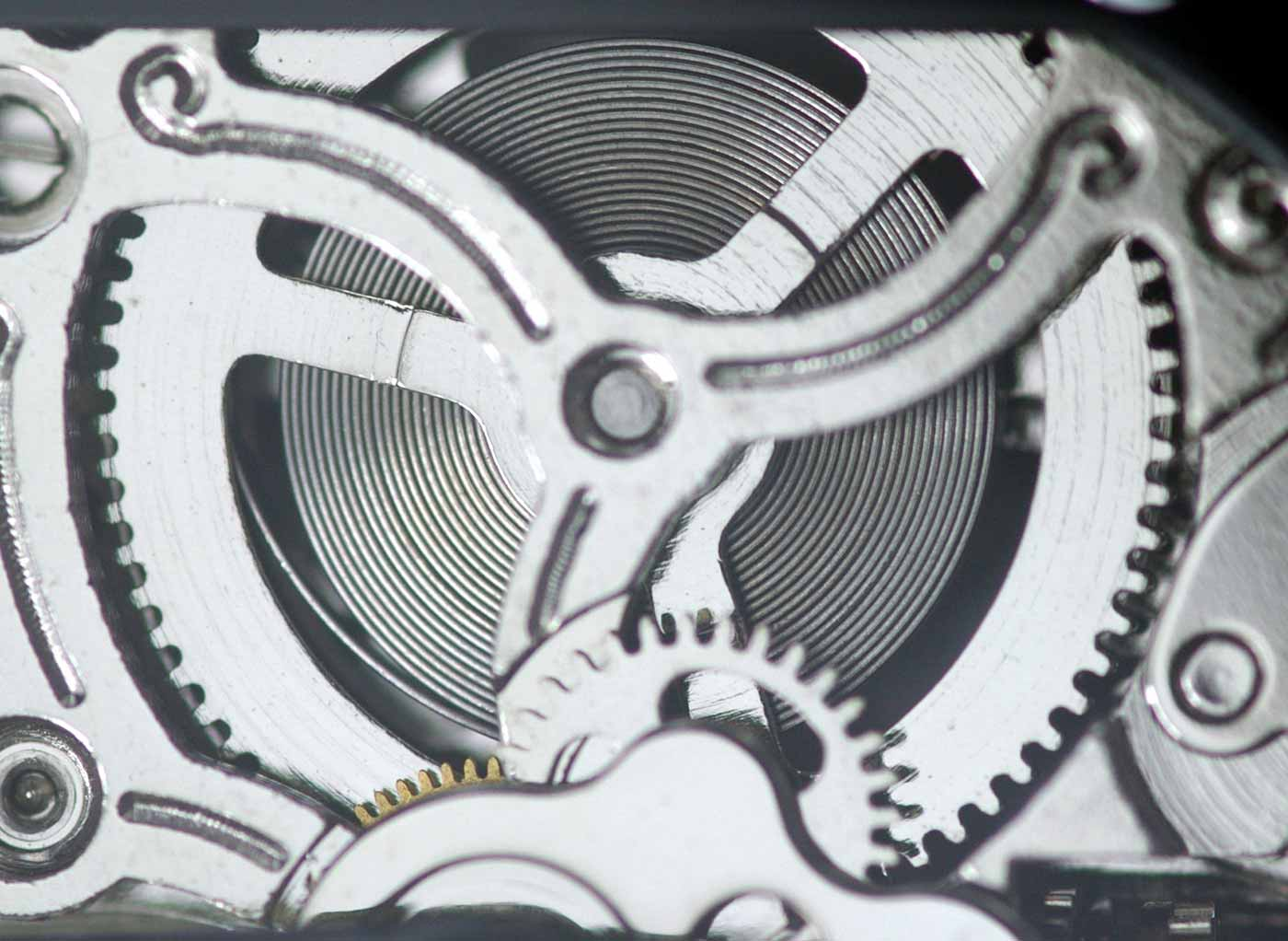 A mainspring in a Sea-Gull ST16 wristwatch movement.
