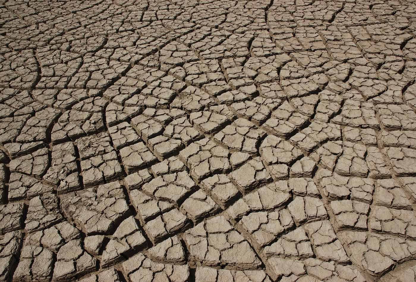 Cracked earth in the Rann of Kutch.