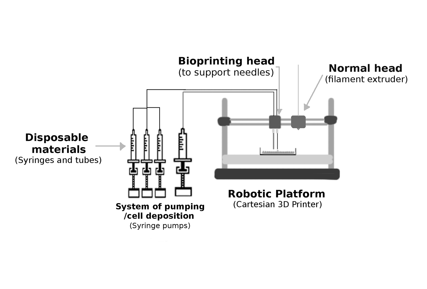 Basic elements of a bioprinter. Image reused with modifications.
