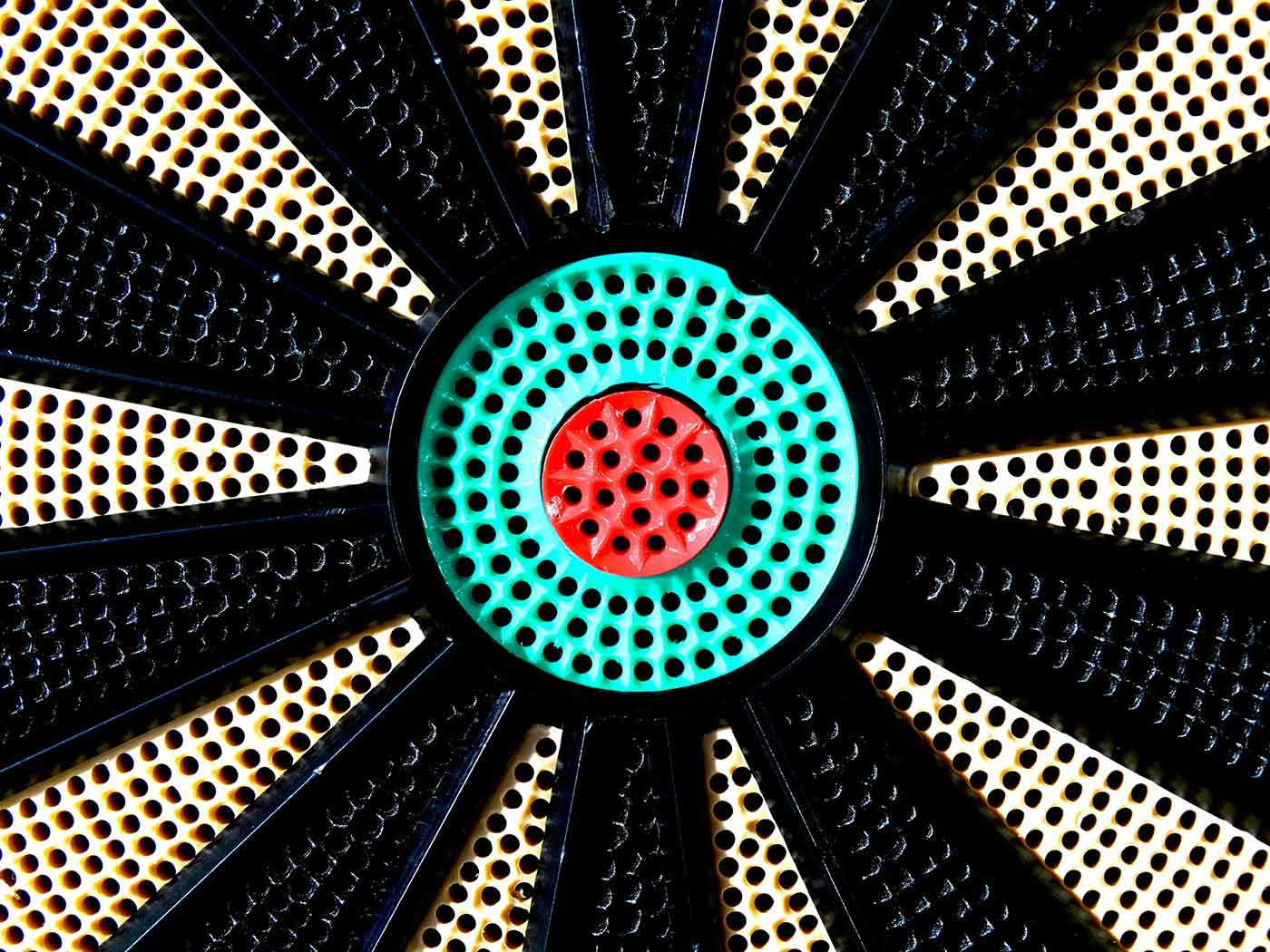 Close-up of dartboard