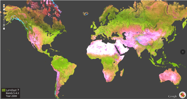 A view powered by Google Earth Engine showing global deforestation