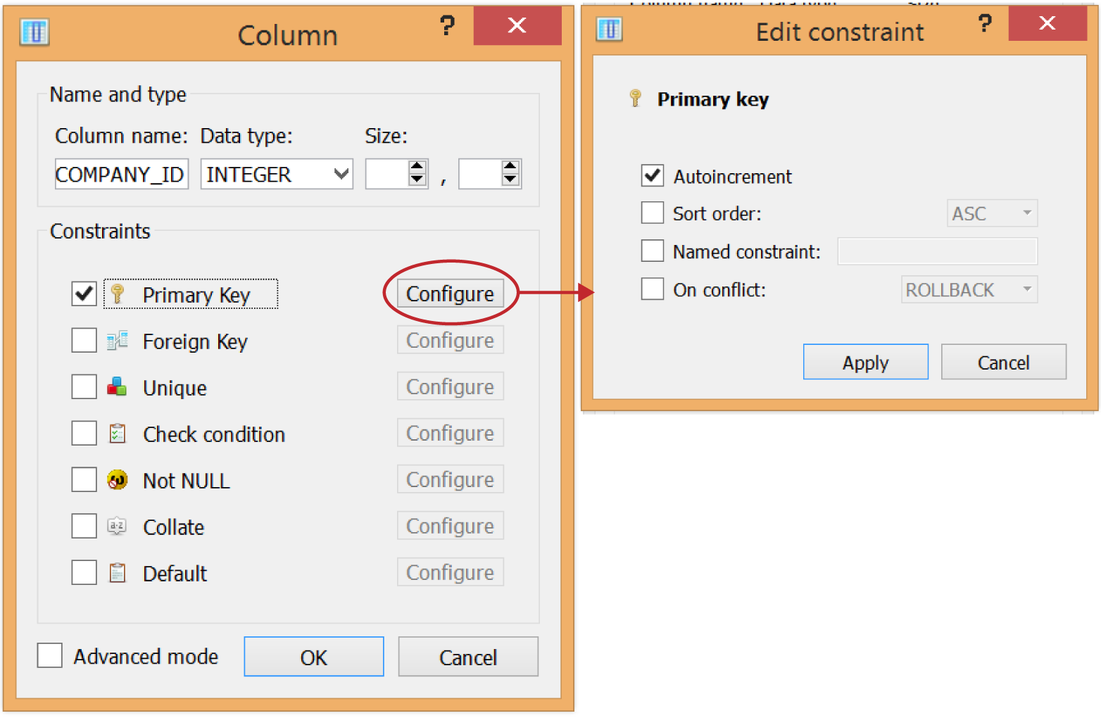 """Defining a new """"COMPANY_ID"""" column that holds integers; it also is configured to be the """"Primary Key,"""" and will automatically populate a value via """"Autoincrement"""" for each inserted record"""