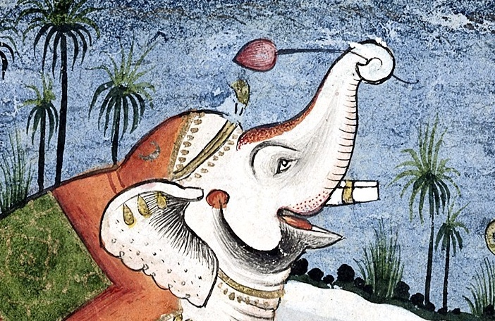 The liberation of the elephant