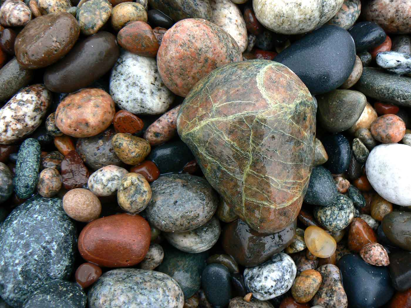 Collection of different beach rocks