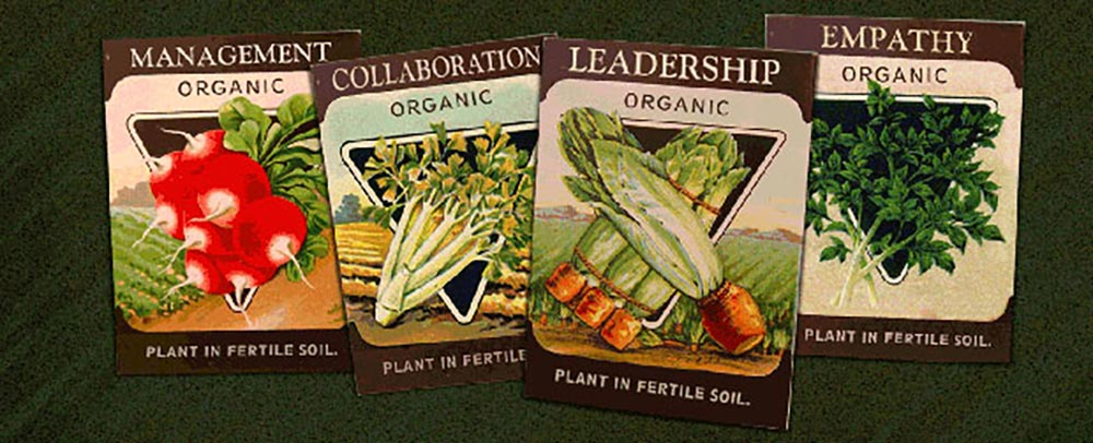 Illustration of seed packets