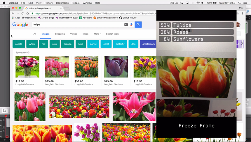 Tulip image search results with iPhone app screen overlay