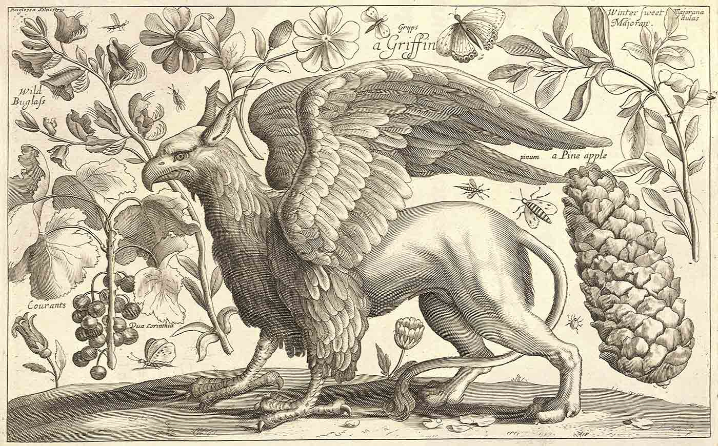 A griffin.