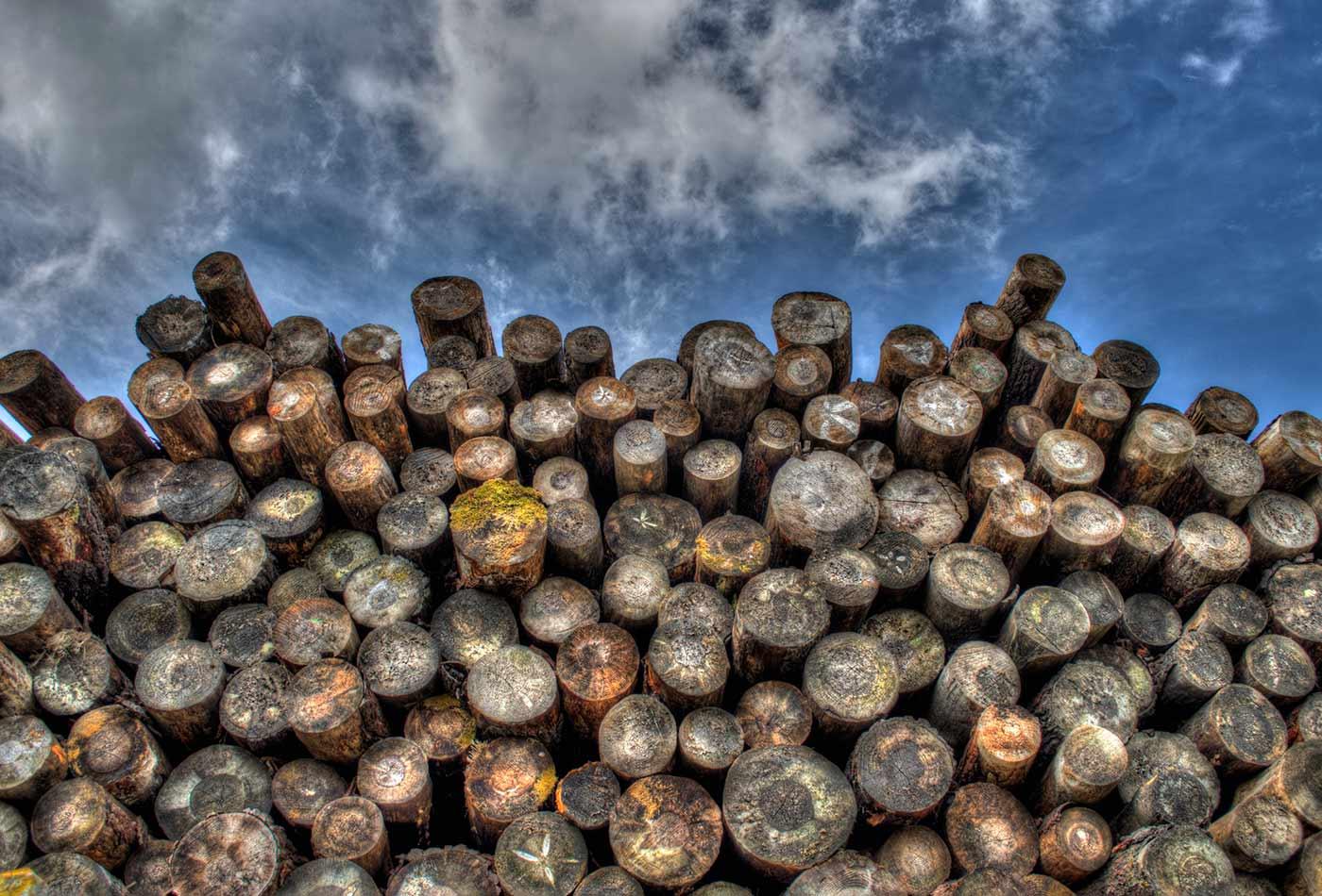 Timber stack.