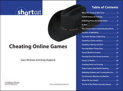 Cheating Online Games
