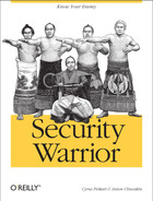 Cover image for Security Warrior