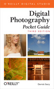 Cover image for Digital Photography Pocket Guide, 3rd Edition