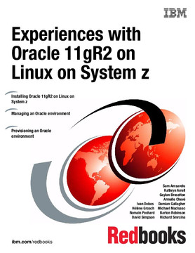 Experiences with Oracle 11gR2 on Linux on System z