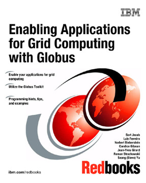 Enabling Applications for Grid Computing with Globus
