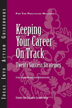 An Ideas Into Action Guidebook: Keeping Your Career On Track: Twenty Success Strategies