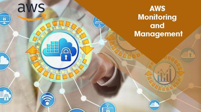 AWS Monitoring and Management