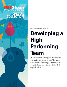 Developing a High Performing Team