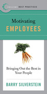 Book cover for Best Practices: Motivating Employees