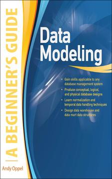 Data Modeling A Beginner's Guide
