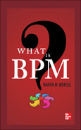 Cover of WHAT IS BPM
