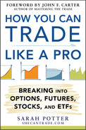 Cover of How You Can Trade Like a Pro: Breaking into Options, Futures, Stocks, and ETFs