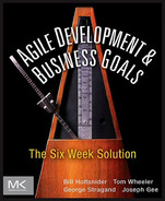 Cover of Agile Development and Business Goals