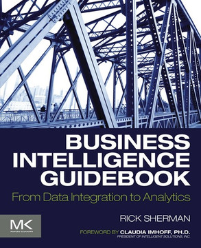 Business Intelligence Guidebook