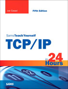 Cover of Sams Teach Yourself TCP/IP in 24 Hours, Fifth Edition