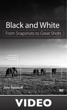 'Black and White: From Snapshots to Great Shots (Streaming Video)'