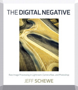 Cover of The Digital Negative: Raw Image Processing in Lightroom, Camera Raw, and Photoshop