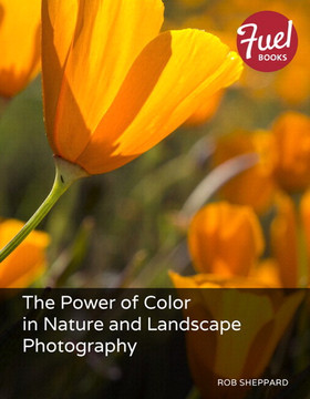 The Power of Color in Nature and Landscape Photography