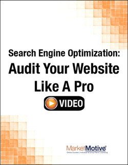 Search Engine Optimization: Audit Your Website Like a Pro (Streaming Video)