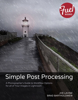 Simple Post Processing: A Photographer's Guide to Workflow Options for all of Your Images in Lightroom