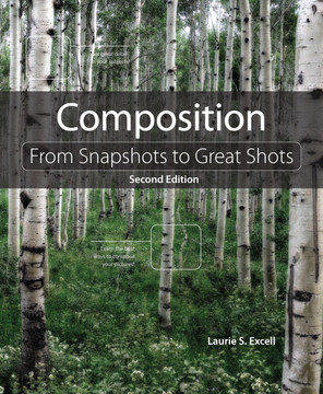 Composition: From Snapshots to Great Shots, Second Edition