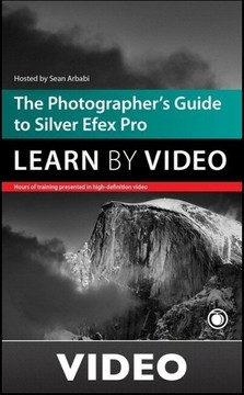The Photographer's Guide to Silver Efex Pro: Learn by Video