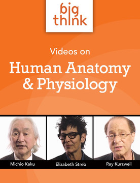 Big Think Videos on Human Anatomy and Physiology