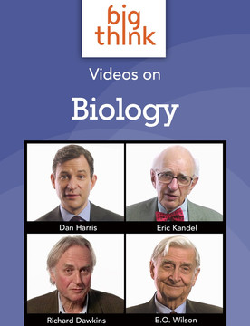 Big Think Videos on Biology