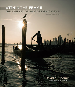 Within the Frame: The Journey of Photographic Vision, Second Edition