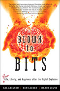 Cover of Blown to Bits: Your Life, Liberty, and Happiness After the Digital Explosion