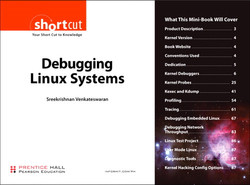Debugging Linux Systems