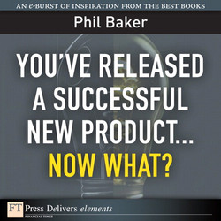 You've Released a Successful New Product...Now What?