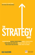 Cover of The Strategy Book