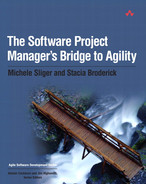 Cover of The Software Project Manager's Bridge to Agility