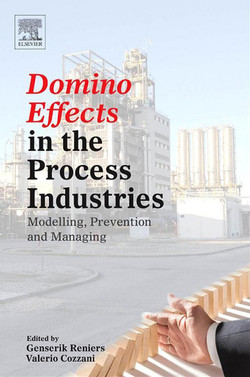 Domino Effects in the Process Industries