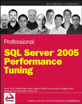 Professional SQL Server® 2005 Performance Tuning