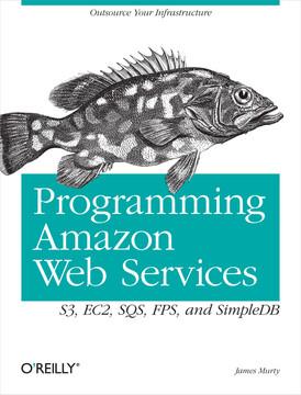 Programming Amazon Web Services